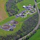 ¿Cómo las bacterias limpian las aguas residuales?