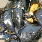 ¿Cuánto tiempo debe transcurrir para bajar los triglicéridos con aceite de pescado?