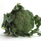 El brócoli y la indigestión