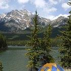 Cómo comenzar un campamento de verano