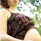 La linaza durante el embarazo