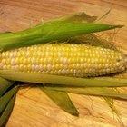 Manualidades con mazorcas de maíz