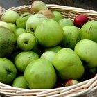 Cómo saber si una manzana está en mal estado