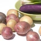 ¿Qué vitaminas se encuentran en la berenjena?