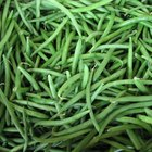 How to Can Green Beans at Home