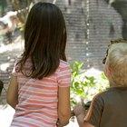 Actividades para pequeños en Ontario, Canadá