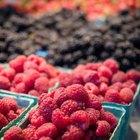 Índice glucémico de las frutas