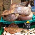 ¿Cuántas proteínas tiene el pescado?