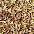 Información nutricional de la cebada