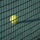 Costo promedio de una cancha de tenis
