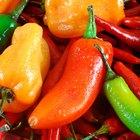 Los alimentos que aceleran tu metabolismo y te ayudan a perder peso