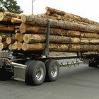The Salary of Log Truck Drivers
