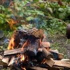 Cosas que hacer en un campamento