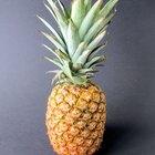 ¿Qué frutas contienen bromelina?