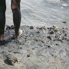 Cómo hacer una envolutura corporal de lodo del mar muerto en tu hogar