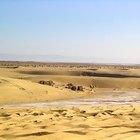 Datos interesantes sobre el paisaje del bioma del desierto