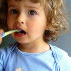 Diferencia entre dientes de leche y permanentes