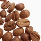 How to Purchase a Coffee Plantation