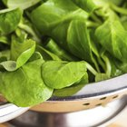 How to Make a Spinach Salad