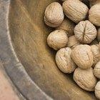 ¿Contienen las nueces ácidos grasos omega 3?