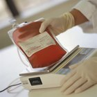 Cómo influye la donación de sangreen la pérdida de peso