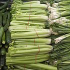 Easy Way to Destring Celery