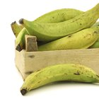How to Cook Matoke (Plantains) the Ugandan Way
