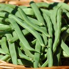 Green Bean Nutrition