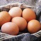 Dieta de atún y huevo para perder peso