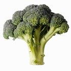 ¿Por qué el brócoli es bueno para ti?