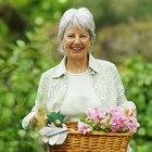 La mejor manera de perder peso para una mujer mayor de 60 años