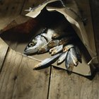 Cook Mackerel in an Oven