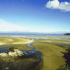 ¿Qué hace que los ríos corran en una dirección determinada?