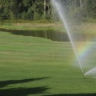 Does a Sprinkler System Add to the Value of a Home?
