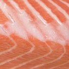 Cooking Ideas Using Canned Pink Salmon
