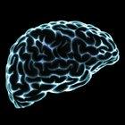 ¿Qué es la psicología freudiana?