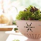 Las verduras que crecen rápido y fácil