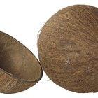 Valor nutricional del azúcar de coco