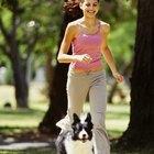 ¿Cuántas calorías quema por día la gente activa y sedentaria?