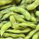 Is Edamame Good for You?