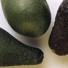 How Can I Soften an Avocado?