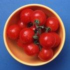 Contenido de sodio en los tomates frescos