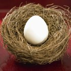 Cómo hacer huevos bebés para la escuela