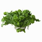 How to Clean and Cook Broccoli Rabe