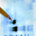 ¿Cuáles son las funciones de una proteasa?