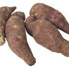 ¿Una batata hervida es buena para una dieta?