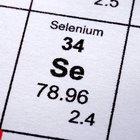 ¿Qué alimentos contienen selenio?