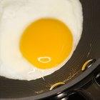 ¿Qué parte del huevo tiene la mayor cantidad de proteína?