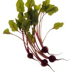 How to Juice Beet Stalks