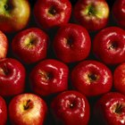 Cómo escalfar manzanas